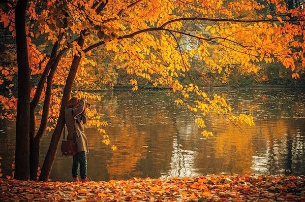 autumn-691263_640