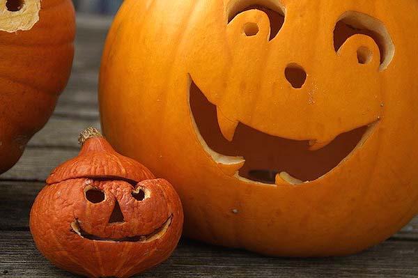 pumpkin-512110_640